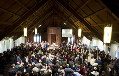 The Congregation celebrates the dedication of our new Torah.